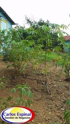 Campito Con Casa De Venta En Higuey, República Dominicana